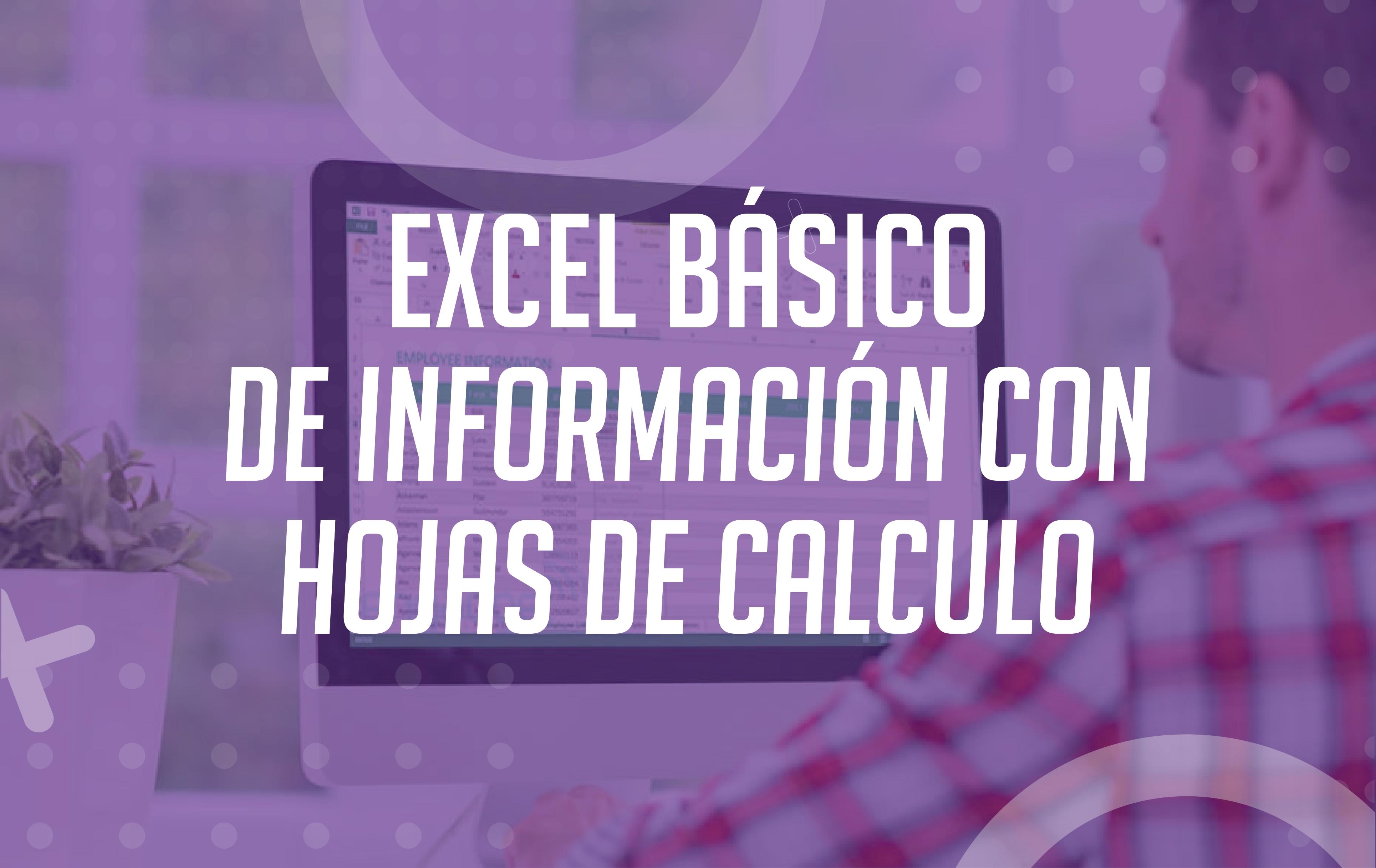 EXCEL BASICO - PROCESAMIENTO BASICO DE INFORMACION CON HOJAS DE CALCULO